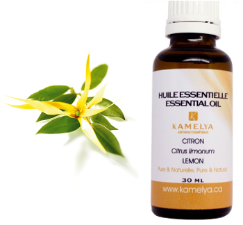 l'huile essentielle d'ylang-ylang